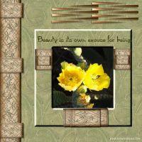 June-2007-004-Deanne-bamboo-kit-flower.jpg