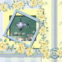 Moonbeam2-005-Blue-Sherbet-Geese.jpg