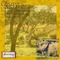 Groove-Inspirations-004-Flip-Horizontal-1.jpg