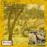 Groove-Inspirations-005-Flip-Horizontal-2.jpg
