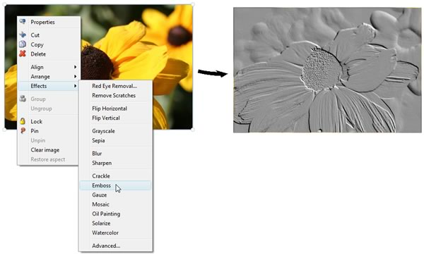 Apply advanced image effects with a few simple mouse-clicks