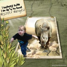 o2bngdhope-Rhino Layout