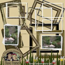 carena-scott-basic-frames-kit.jpg