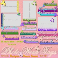 Donna Thomas - Photo Word Tags - Scrapbook MAX! Booster Pack Store
