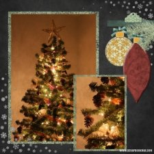 tina-s-ornamental-christmas.jpg