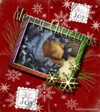 mollie-christmas-page.jpg