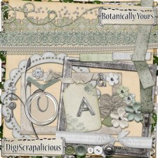 crystal-longbrake-botanically-yours-embellishments-kit.jpg