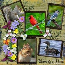 rosies-grandma-ontario_-_brimming_with_life