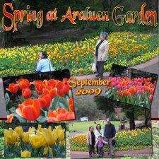 omajo-araluen-garden-layout.jpg